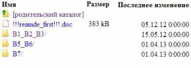 proshivka-dir-300 (43)