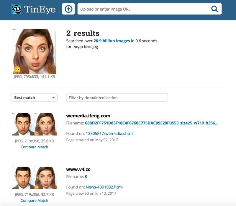 Поиск фото через Tineye